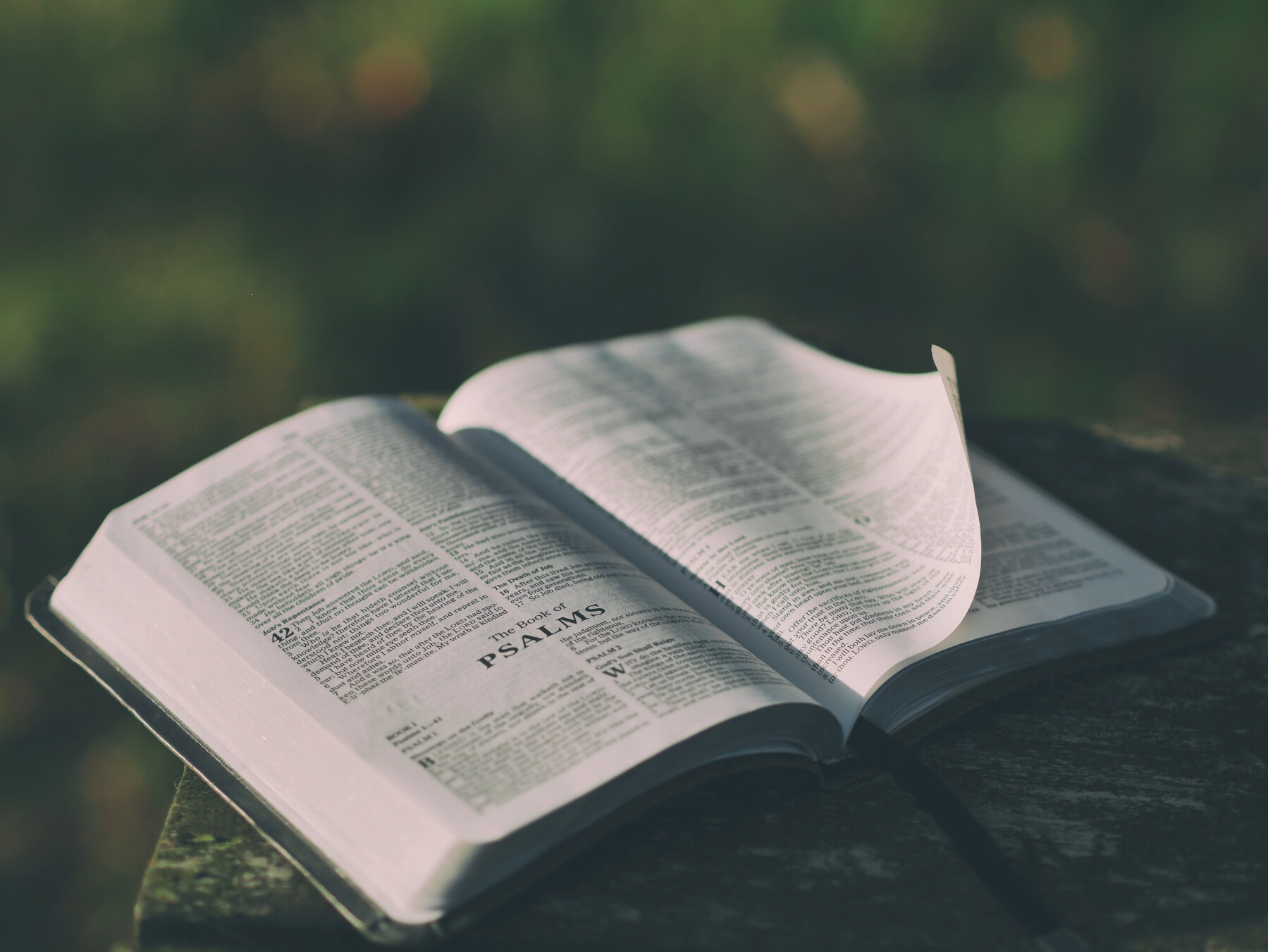 BIBLE STUDY IN SANTA MARIA